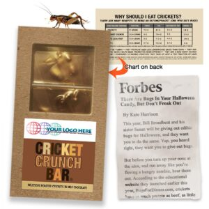 Cricket Crunch Bar